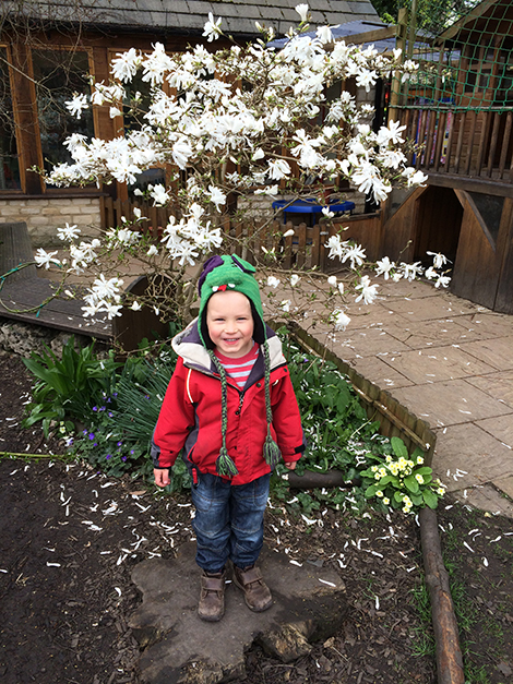The Magnolia in the garden at Acorns Nursery School Cirencester