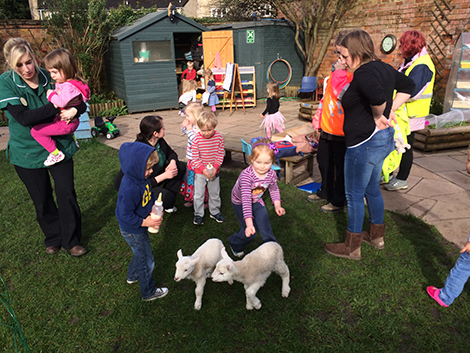 Feeding the lambs in the garden at Acorns Nursery School Cirencester